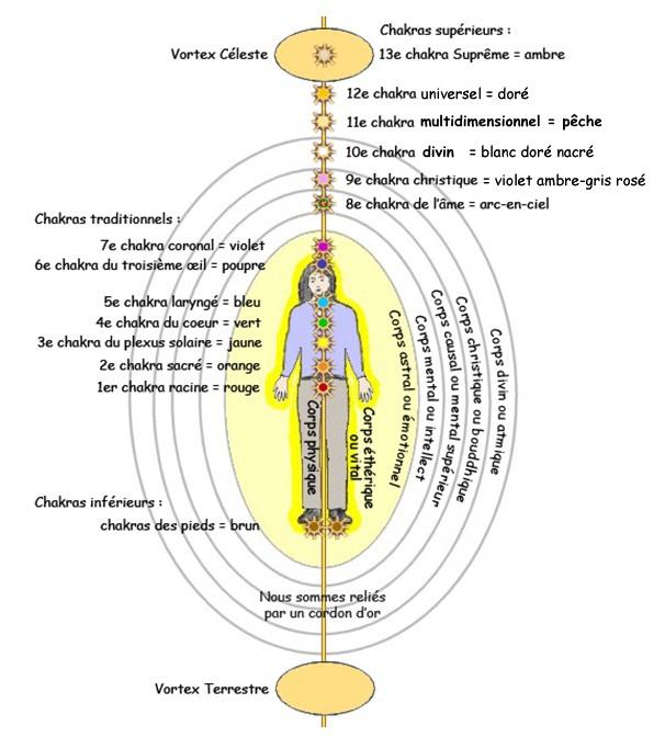 Favorit L'aura et ses sept corps énergétiques WN77